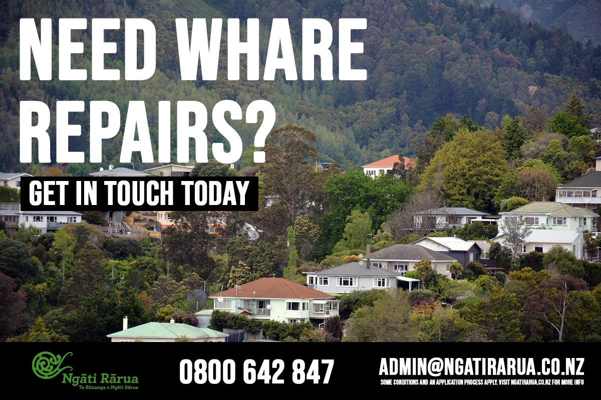 We need 10 whānau homeowners in Wairau for our pilot home repairs programme